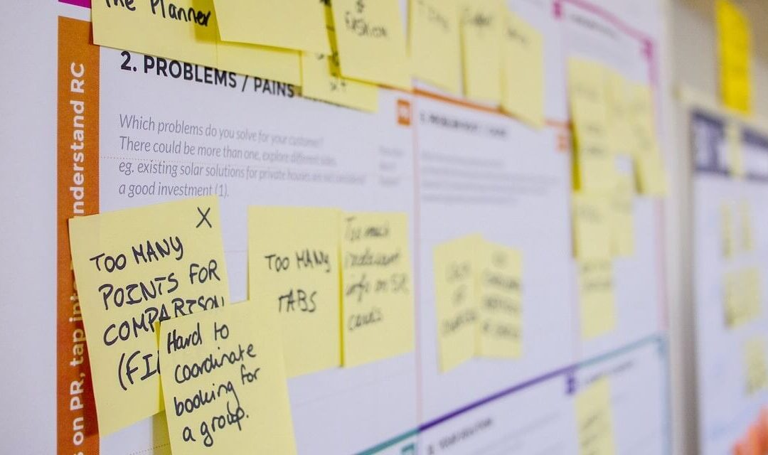 Winning in the Age of Agile Business Development
